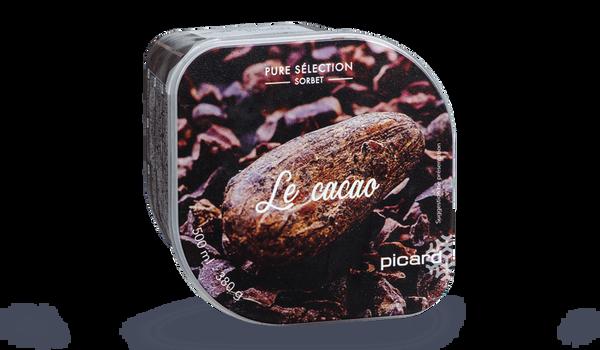 Sorbet Le cacao