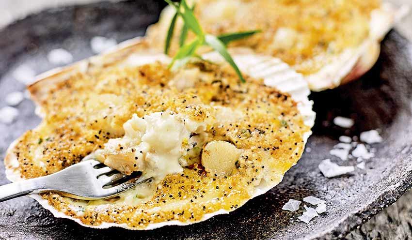 2 coquilles aux poissons et aux noix de saint jacques surgel s les entr es tartes et salades - Coquille saint jacques maison ...