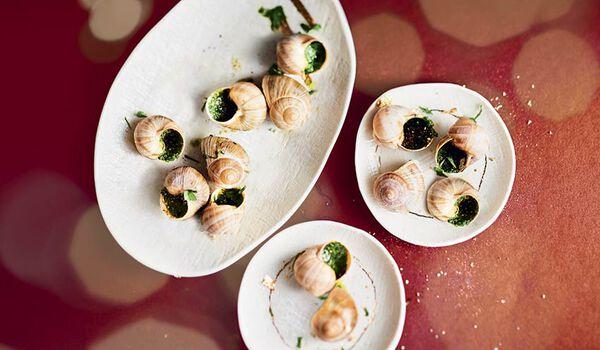 12 escargots moyens