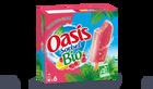 6 bâtonnets Oasis sorbet bio