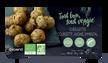 10 boulettes végétales