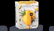 5 bâtonnets mangue-ananas-sorbet plein fruit