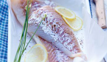 Filets de cabillaud MSC, Pêche française