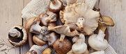 Les champignons surgelés Picard: 3 bonnes raisons de les cuisiner