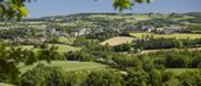 Le veau de l'Aveyron et du Ségala : la simplicité d'une production ancestrale