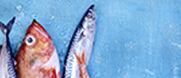 Les produits de la mer : toutes les raisons de les aimer