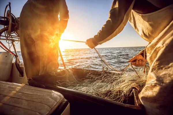 Photo pêche