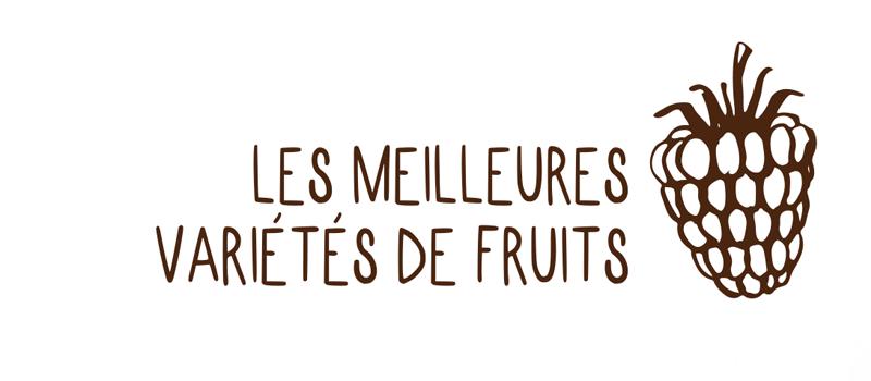 Meilleurs variètés de fruits